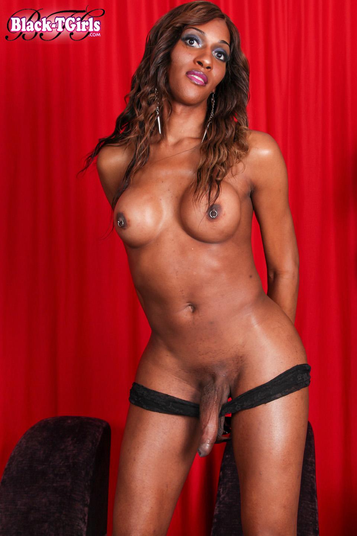 Hot Black Tgirls, Ebony Shemales  Tranny Pornstars-7391