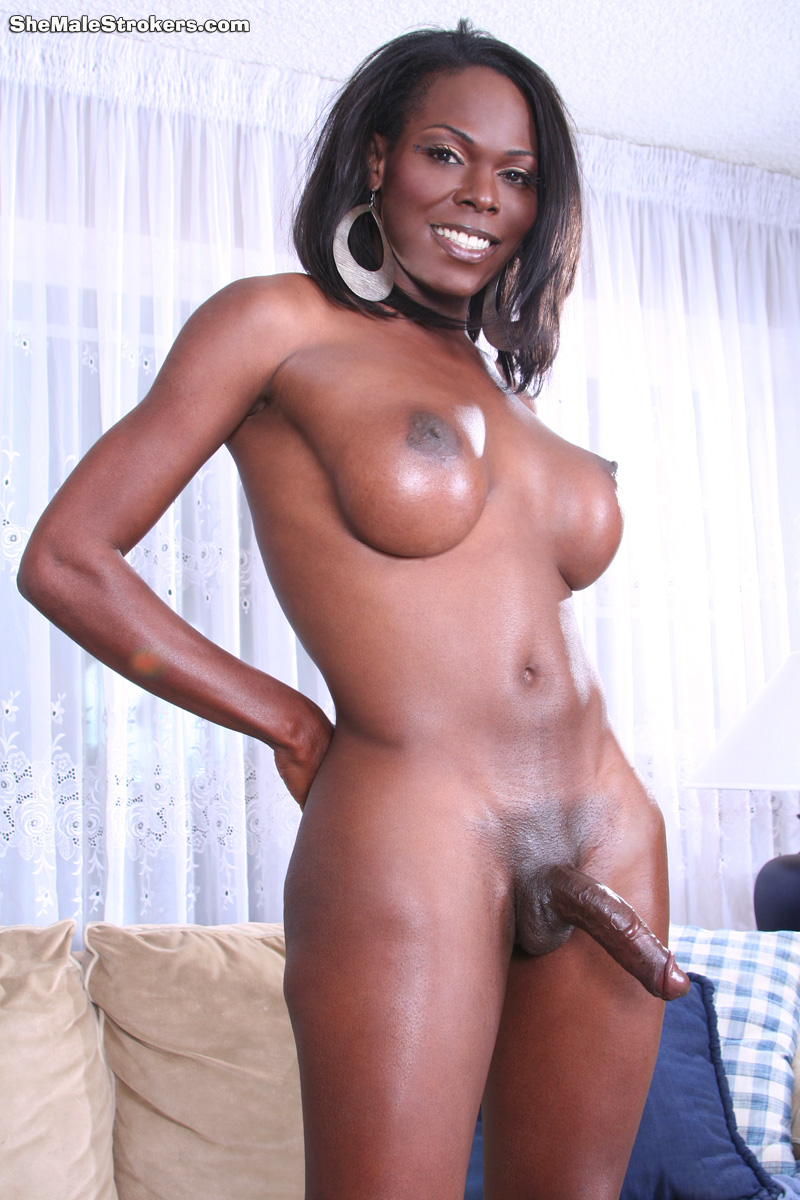 Ebony tgirl with huge tits deepthroats big white cock in pov