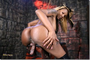 Bobs Tgirls Wave of Horny Black Shemales Pornstars with TS Electra and TS Chanel Couture…