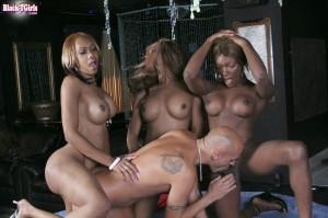 Hung Black Tranny Wild Orgy